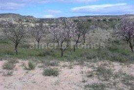 Land Almendras : Land for sale in Partaloa, Almeria