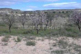 Land Almendras : Land for sale in Partaloa, Almeria